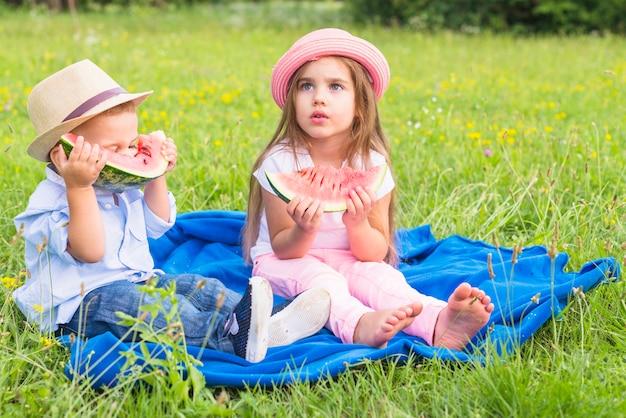 Pequeño niño y niña sentada en manta azul sobre hierba verde comiendo sandía Foto gratis
