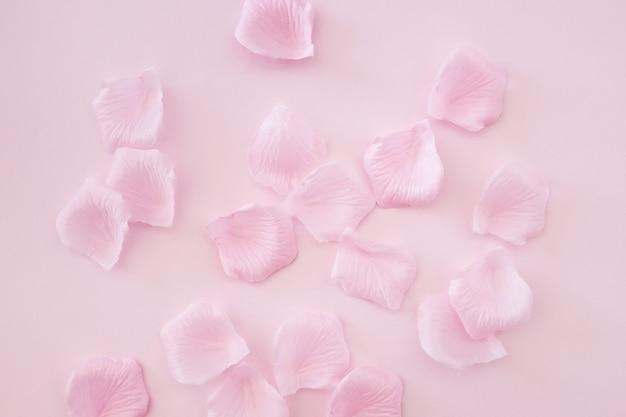 Pétalos de rosa sobre fondo rosa Foto gratis