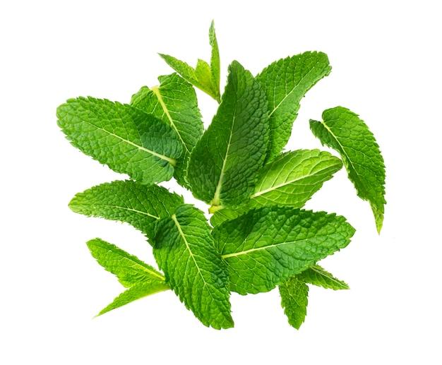 Pila de hojas de menta aisladas sobre fondo blanco Foto Premium