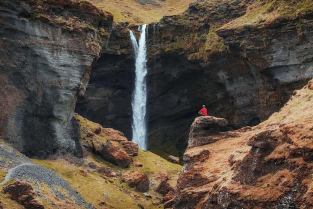 El pintoresco paisaje de montañas y cascadas de islandia. altramuz azul salvaje que florece en verano. turista considerando la belleza escénica del mundo Foto Premium