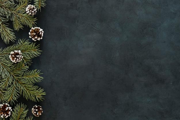 Pizarra con conos y agujas de pino Foto gratis