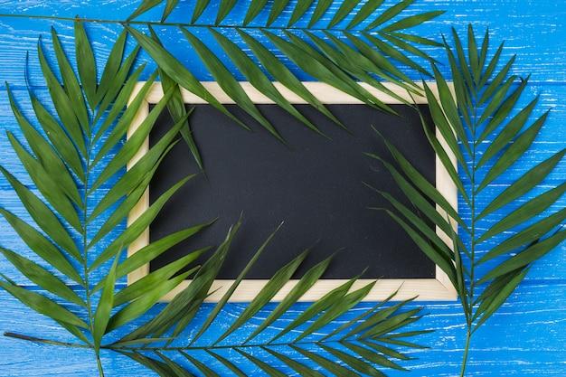 Pizarra y hojas de plantas a bordo. Foto gratis