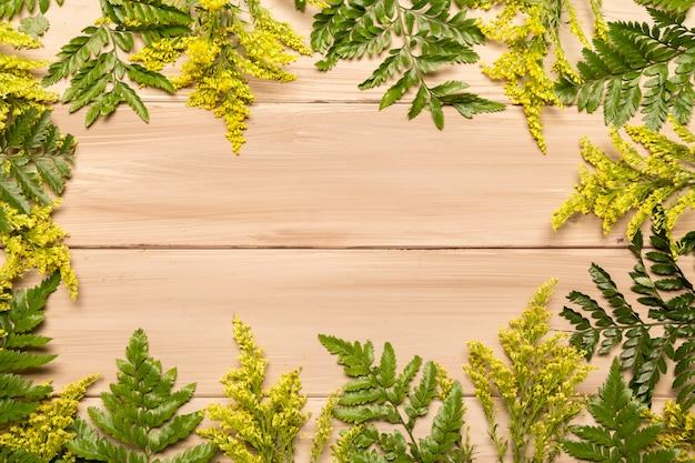 Plana puesta de helechos y hierba. Foto gratis