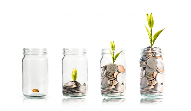 Planta que brilla intensamente en las monedas que apilan dentro del tarro en blanco. dividendo del depósito bancario y el concepto de inversión en acciones. Foto Premium