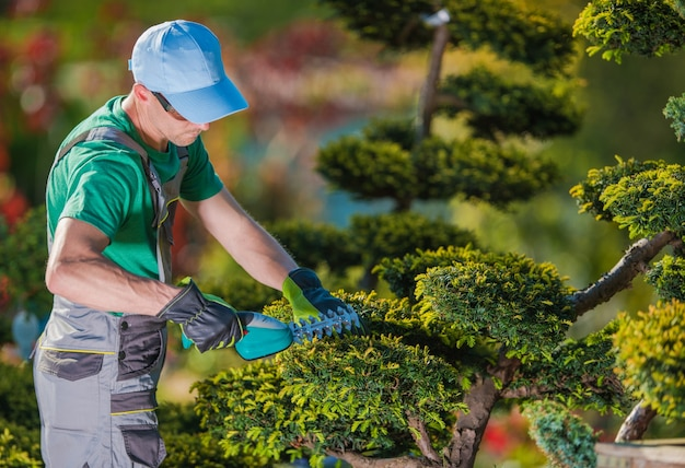 Plantadora de plantas de jardinero topiario descargar for Trabajo jardinero