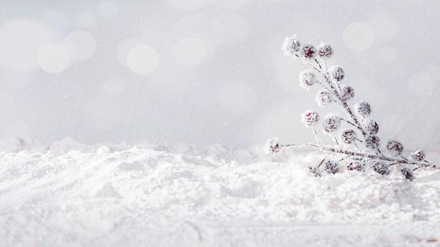 Plantar ramitas en banco de nieve y copos de nieve. Foto gratis