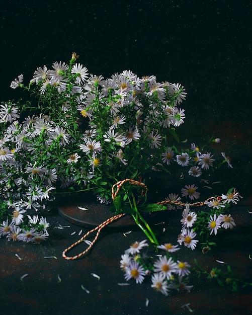 Plantas de otoño asters (aster) en un florero vintage. foto oscura Foto gratis