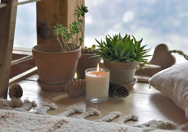 Plantas y vela delante de cristal de vidrio. Foto Premium