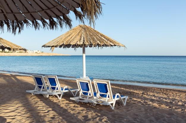 Playa de arena con palmeras con pérgola metálica y tumbonas de plástico. una tumbona bajo una sombrilla. Foto Premium