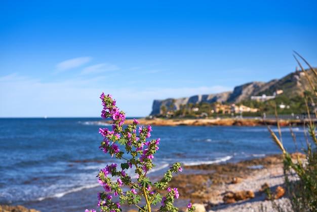 Playa denia las rotas en primavera en alicante Foto Premium