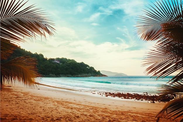 Playa tropical Foto Premium