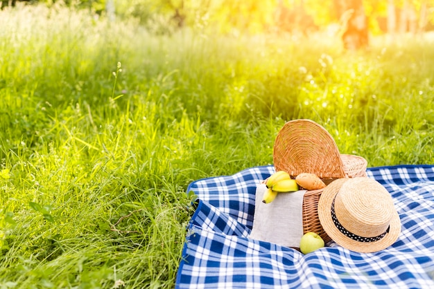 Prado cubierto de hierba iluminado por el sol con una cesta de picnic en cuadros a cuadros Foto gratis