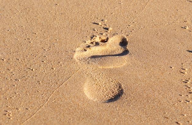 Primer plano de una huella en la arena. Foto Premium