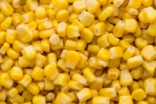 Primer plano de maíz en grano entero enlatado Foto Premium