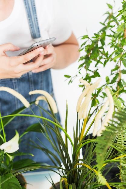Primer plano de una mano de floristería utilizando un teléfono móvil cerca de las plantas Foto gratis