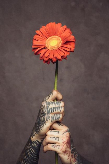 Primer plano de la mano del hombre con una flor de gerbera fresca tatuada sosteniendo contra la pared gris Foto gratis