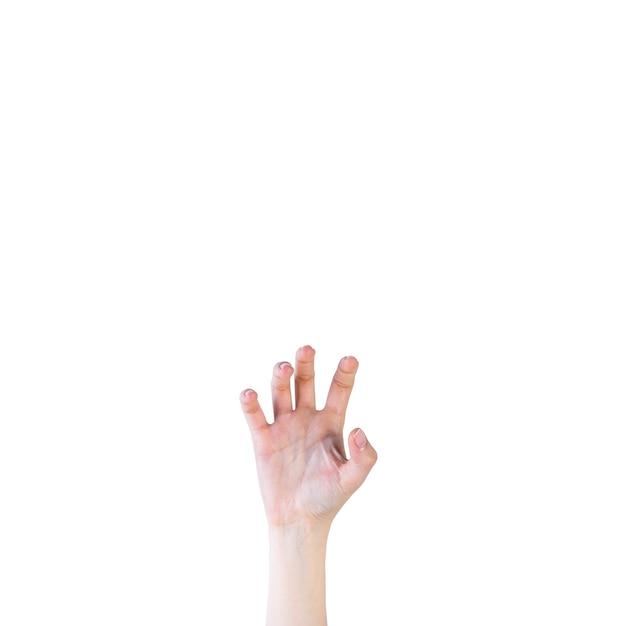 Primer plano de una mano humana en gesto de garra sobre fondo blanco Foto gratis