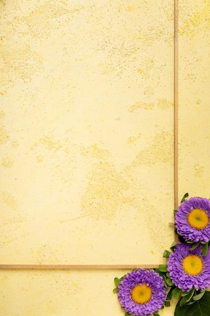 Primer plano marco minimalista con margaritas violetas frescas Foto gratis
