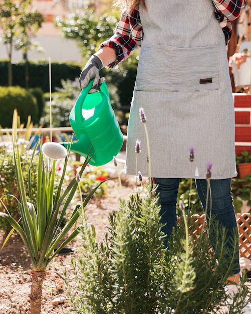 Primer plano de mujer jardinero regando las plantas con regadera verde Foto gratis