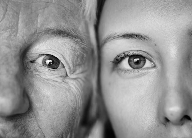 Primer plano de los ojos de la familia Foto gratis