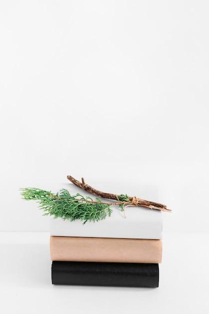 Primer plano de ramitas en la pila de libros con diferentes cubiertas aisladas sobre fondo blanco Foto gratis