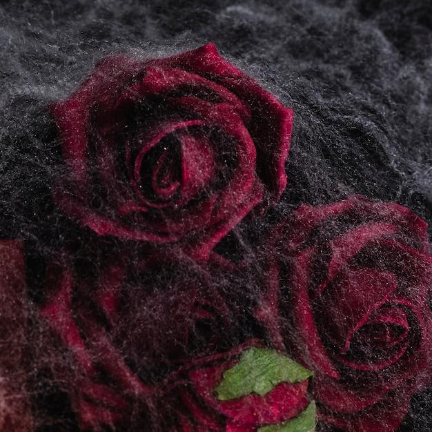 Primer plano de rosas con telaraña Foto gratis
