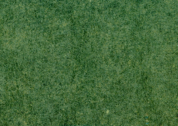 Primer plano de textura verde Foto gratis