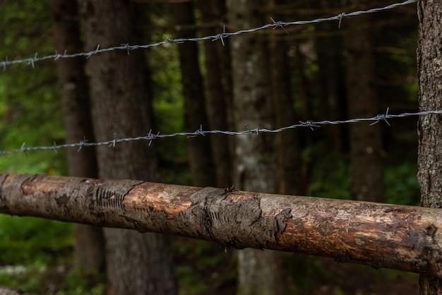 Primer plano de una valla de alambre de púas oxidado Foto Premium