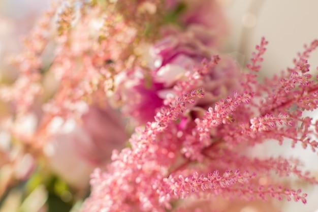 El primer rosado astilbe y el clavel florece en el día brillante con borroso. Foto Premium