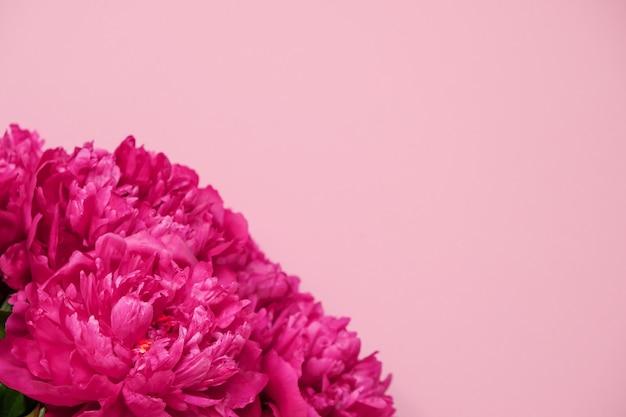 Primer rosado hermoso del ramo de la peonía en fondo rosado. vista superior. lay flat Foto Premium