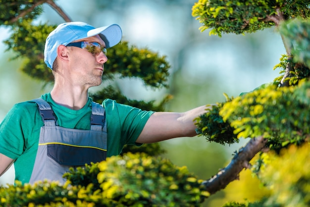 Pro jardinero en el trabajo descargar fotos gratis for Trabajo jardinero