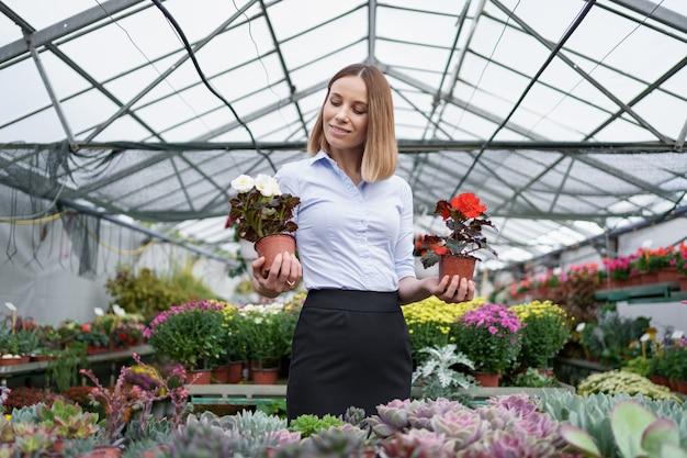 Propietario de negocio sonriente en su vivero de pie sosteniendo en las manos dos macetas con flores rojas y blancas en el invernadero Foto gratis
