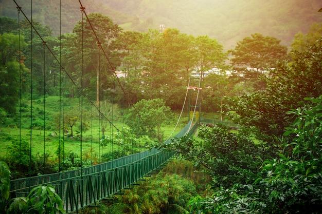 Puente colgante en medio de la naturaleza en costa rica Foto Premium