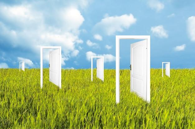 Puertas blancas en el prado Foto gratis