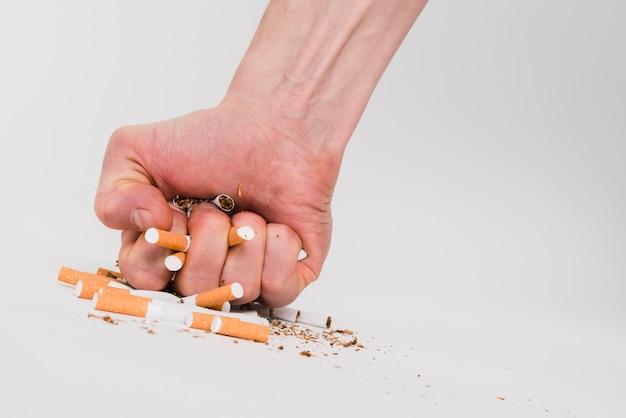 El puño de un hombre aplastando cigarrillos sobre fondo blanco Foto gratis