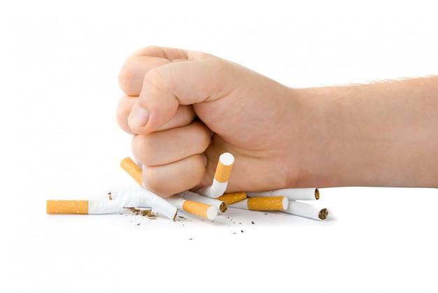 Puño masculino con muchos cigarrillos aislados en blanco Foto Premium