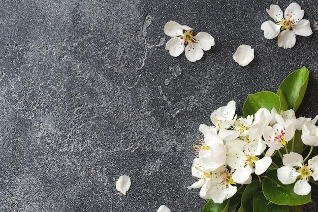 Rama floreciente de la primavera en fondo concreto gris Foto Premium