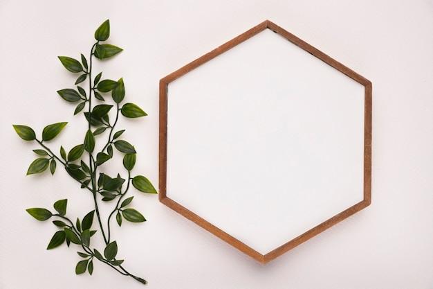 Ramita verde con hojas cerca del marco de madera hexagonal sobre fondo blanco. Foto gratis