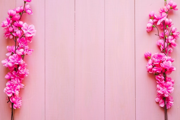 Ramitas florecientes en fondo rosado Foto Gratis