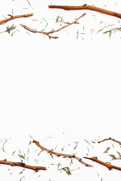 Ramitas secas y agujas de abeto. Foto gratis
