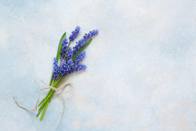 Ramo de flores muskari en el fondo azul cielo Foto Premium