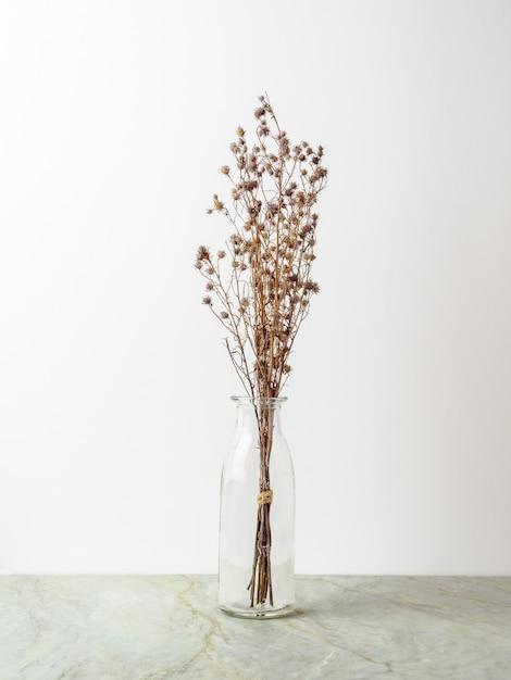 Ramo De Flores Secas De Gypsophila Para La Decoracion Descargar