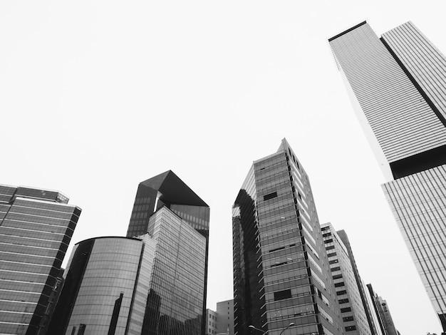 Rascacielos en blanco y negro Foto Premium