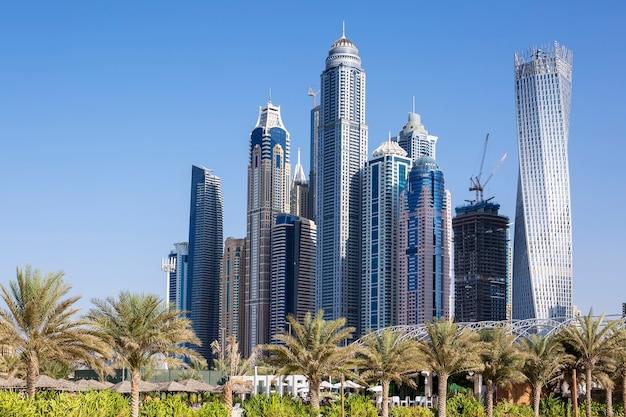Rascacielos y palmeras en dubai. eau Foto gratis