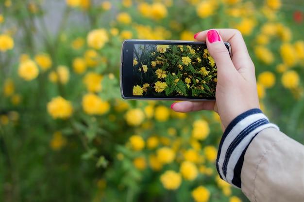 Realización de instantáneas de flores con teléfono móvil inteligente. Foto Premium