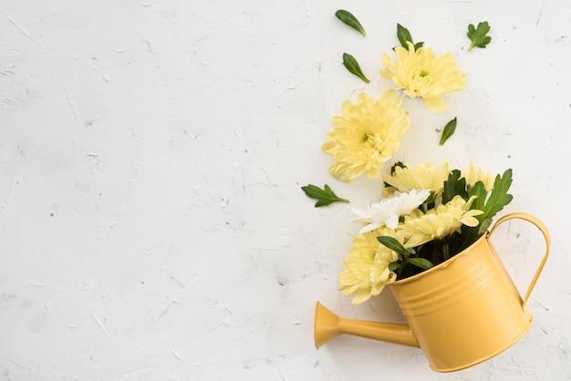 Regadera y flores amarillas de primavera Foto gratis