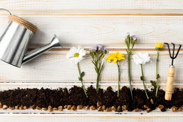 Regadera para flores vista superior Foto gratis