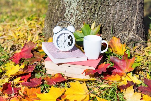 Reloj blanco y libros sobre hojas secas Foto Gratis