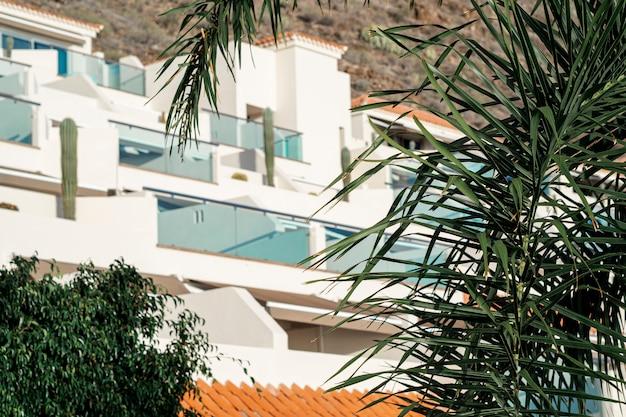 Resort blanco con hojas de cocotero Foto gratis