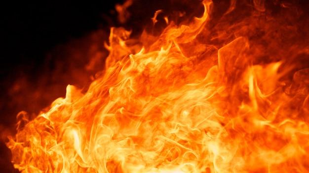 Resumen de fuego llama de fuego Foto Premium